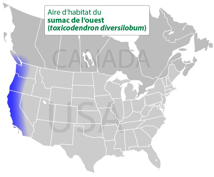 Aire d'habitat du sumac de l'ouest (toxicodendron diversilobum)