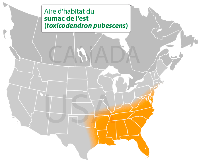 Aire d'habitat du sumac de l'est (toxicodendron pubescens)