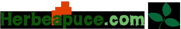 herbeapuce.com